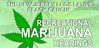 NJLBC Rec Marijuana Hearings