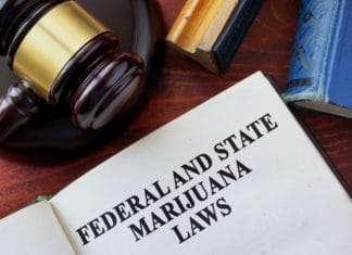 Cannabis Legalization in NJ