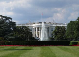 Presidential Candidates Debate Cannabis In White House