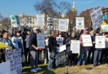 Activist rally for homegrow