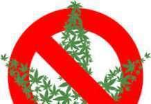 SAM and NJ Ramp, anti-cannabis