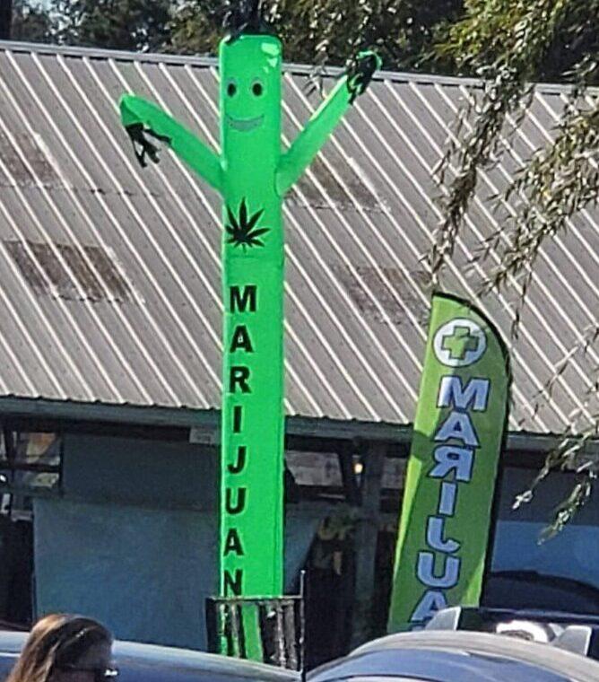 cannabis festival