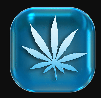 cannabis tech
