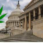 photo of Schumer Pushing Federal Legalization, Harris Reveals Biden's Apathy image